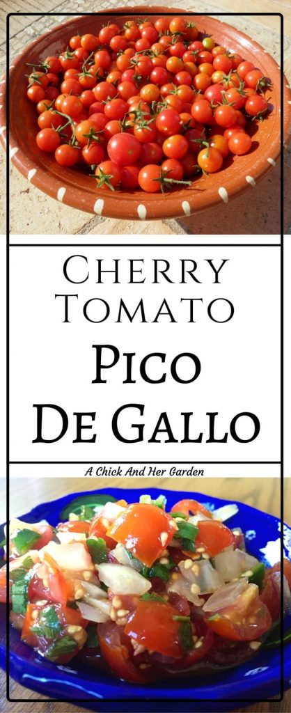 Cherry tomato plants can grow like weeds! Weeds that give you treats! What should you do with your extra cherry tomatoes? Make Pico De Gallo!