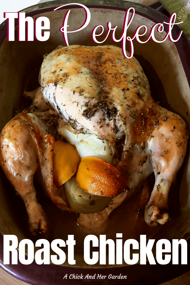 Having the perfect roast chicken recipe in your recipe box is a must! And this recipe is just that! Perfect every time and the chicken is great for dinner with a few sides or shredded and used in salads, casseroles and more! #roastchicken #chickenrecipe #dinner #fromscratch #achickandhergarden