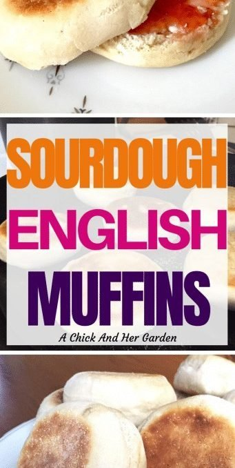 After trying these sourdough English Muffins I don't think I could ever go back to store bought English Muffins! Such an easy way to use up extra sourdough starter! #sourdough #sourdoughrecipes #sourdoughstarter #sourdoughbaking #homesteadbaking #baking #breadrecipes #bread #breakfast