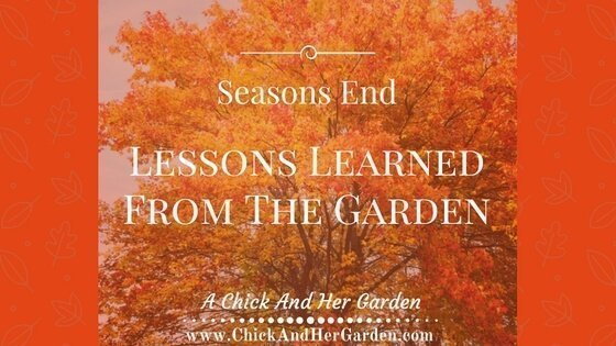 Lessons Learned From The Garden