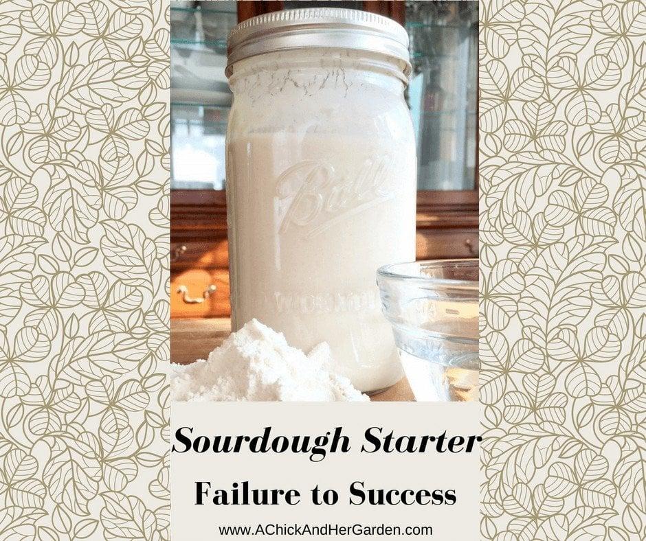 Sourdough Starter ~ Failure to Success