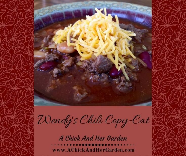Wendy's Chili Copy-Cat
