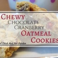 Chewy Chocolate Cranberry Oatmeal Cookies