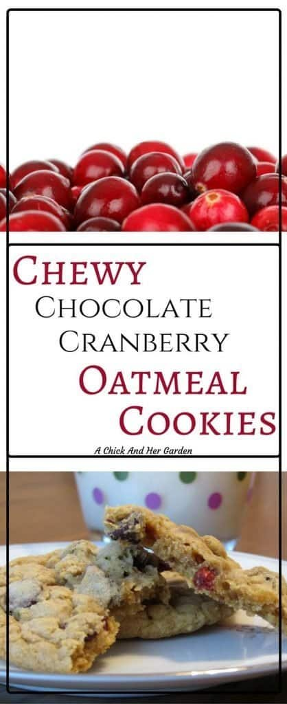 I was a chocolate chip cookie girl! But this oatmeal cookie recipe may have converted me!