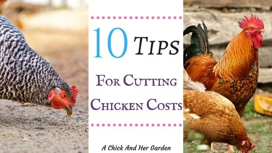 10 Tips For Cutting Chicken Costs
