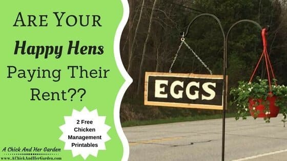 Are Your Happy Hens Paying Their Rent?