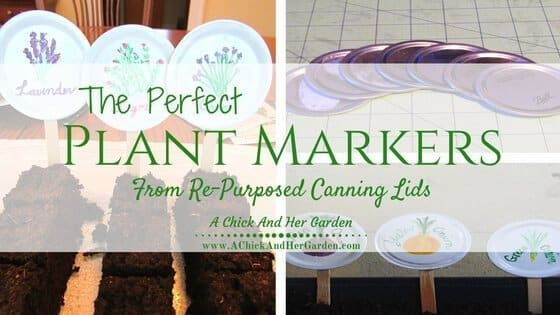 The Perfect Plant Markers From Re-Purposed Canning Lids