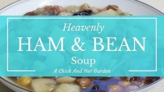 Heavenly Ham And Bean Soup