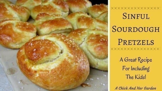 Sinful Sourdough Pretzels