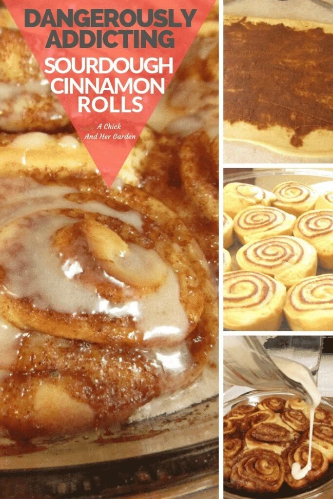 The name says it all! These really are dangerously addicting sourdough cinnamon rolls! I'm always looking for new ways to use my sourdough starter and I'm so glad I tried this recipe!! #cinnamonrolls #sourdoughrecipes #sourdoughcinnamonrolls #achickandhergarden