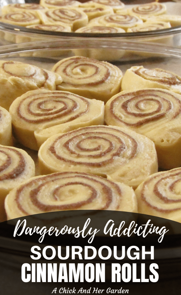Cinnamon Rolls are addicting enough as it is! After I made these sourdough cinnamon rolls I can't imagine going back! #breakfastrecipes #baking #sourdoughrecipes #cinnamonrolls #bestrecipes #fromscratchcooking
