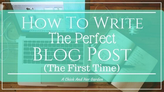 How To Write The Perfect Blog Post, The First Time