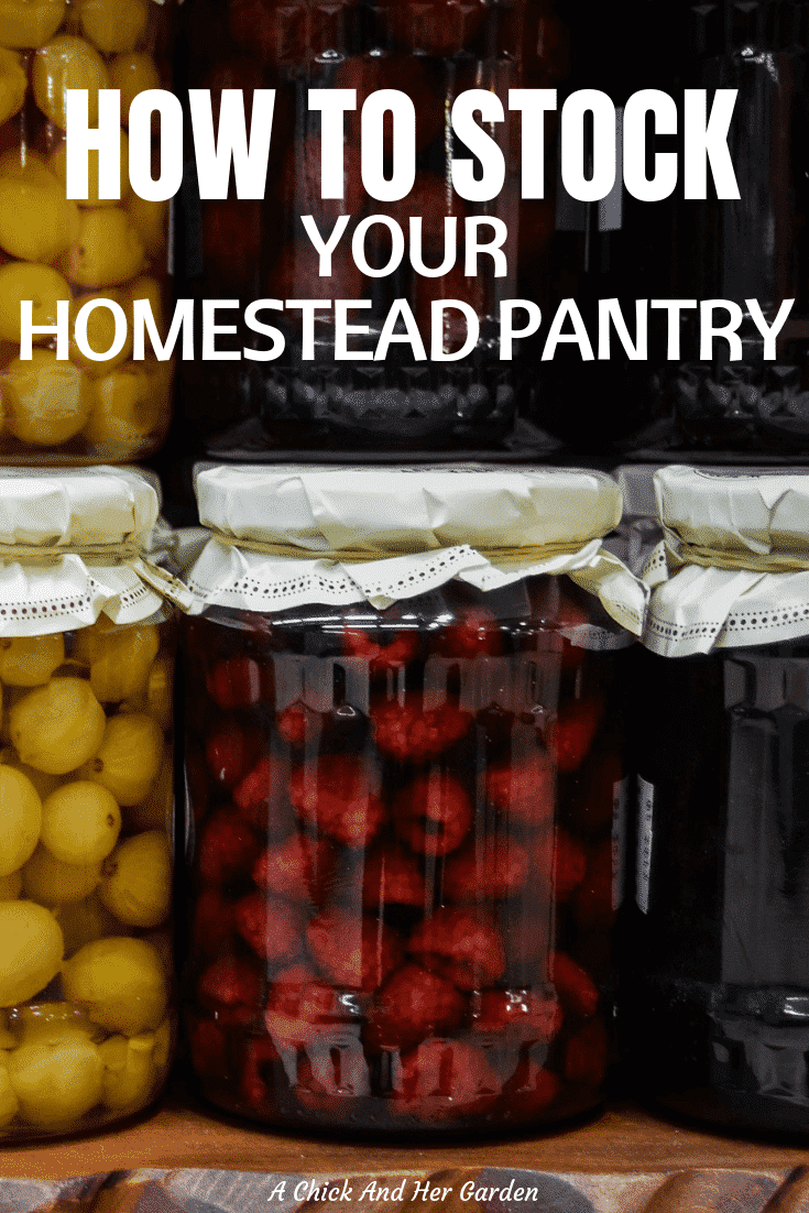 Finding new ways to preserve food is always fun, but where do you get started in the beginning? This is a great list of ways to get you motivated and help start your pantry! Plus a list of recipes that's always growing! #foodpreservation #homesteadpantry #homesteadprep #farmtotable #achickandhergarden