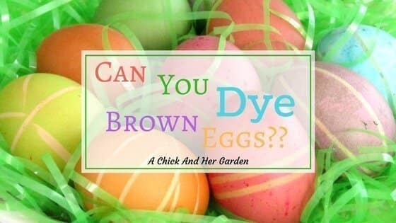 Apr 02,  · The melted crayon, glittery eggs are beautiful. I think my kids would like that activity. We will have to try it this year. I pinned this and it would be great if you .