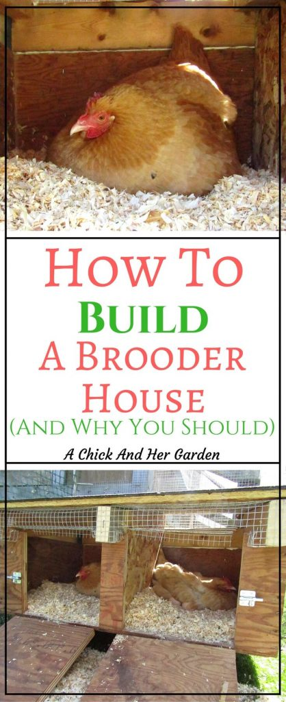 After years of trying to figure out how best to care for our broody hens we decide to build brooder house! And the best part is, we only spent $14!!!!