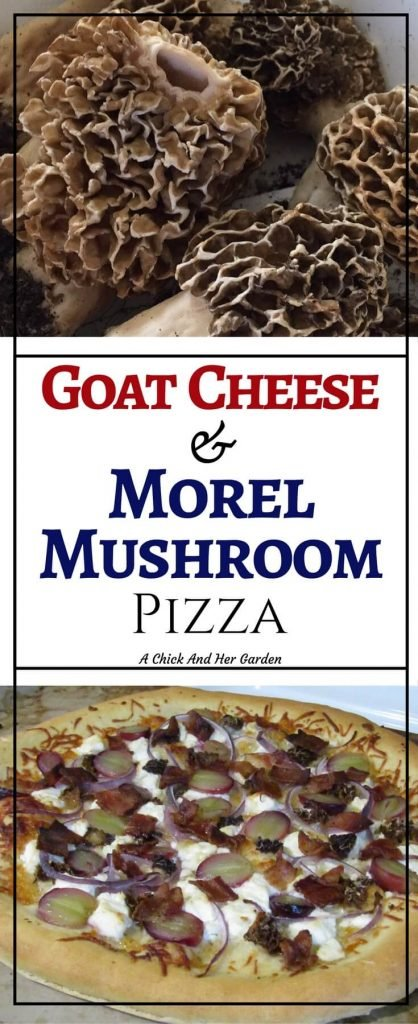 How should you cook morel mushrooms? On a pizza! This pizza!