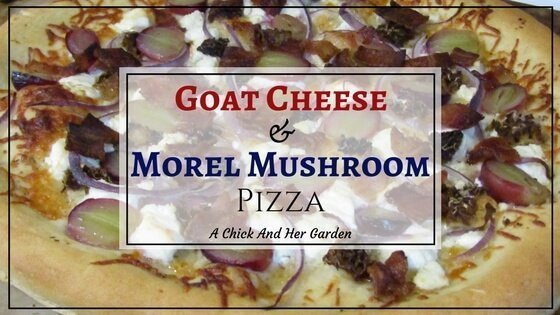 Goat Cheese and Morel Mushroom Pizza