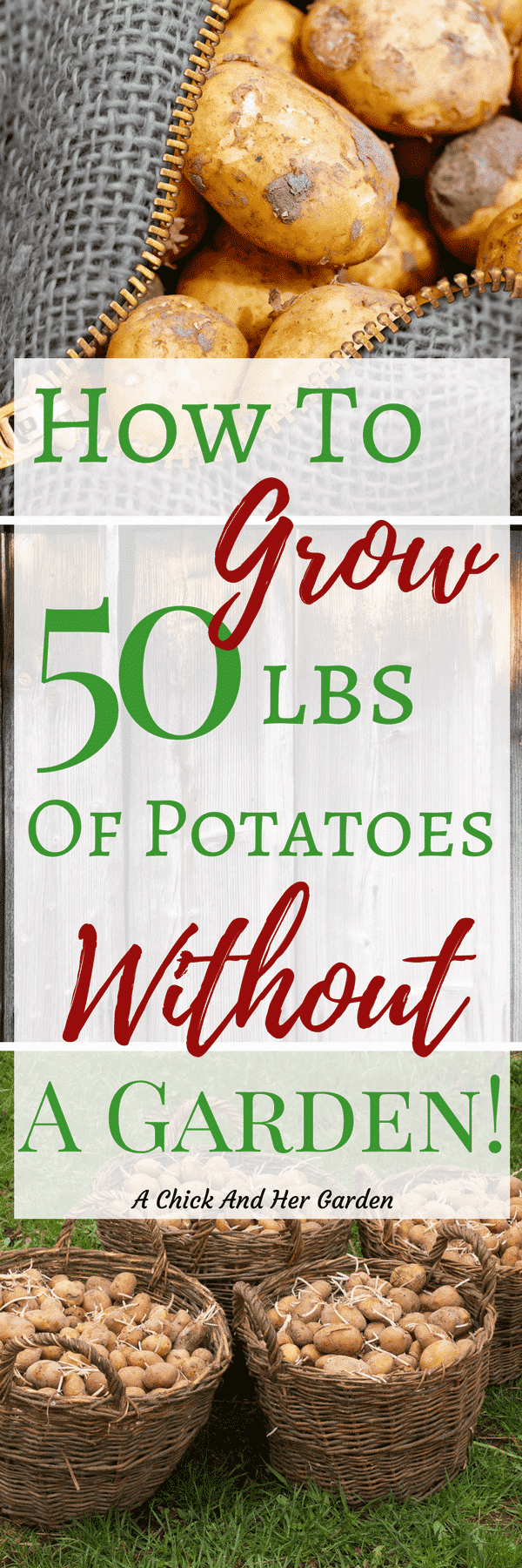 I almost gave up on growing potatoes, because they took up so much space in the garden. This trick helps me grow them without even planting them in the garden! #growingpotatoes #containergarden #gardening #growfood #achickandhergarden