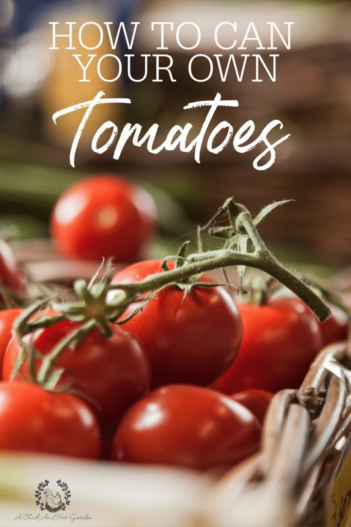 Canned tomatoes are probably the most important item in my pantry! But nothing compares to home canne tomatoes! And it couldn't be easier to can your own! #homecanning #canningtomatoes #waterbathcanning #foodpreservation #preservingtheharvest #achickandhergarden