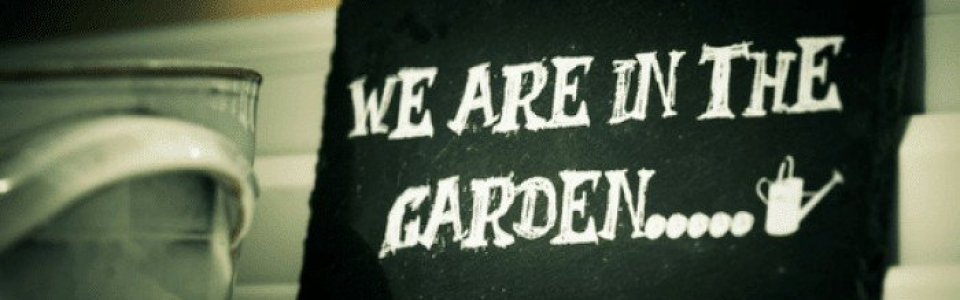 cropped-cropped-in-the-garden.png