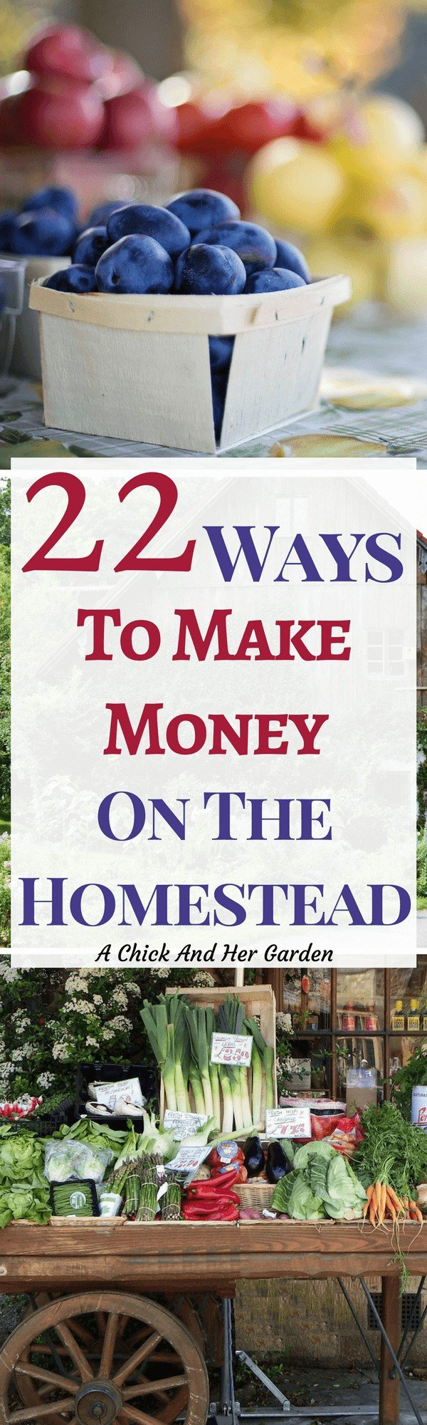 When we homestead we grow and raise our own food. But, unfortunately we still need money. These are awesome and easy ways to make money on the homestead!