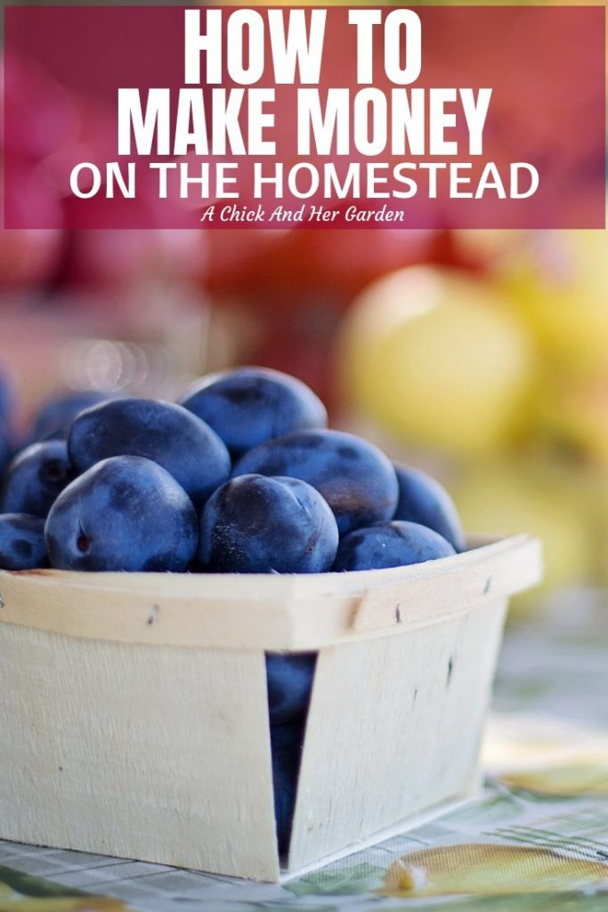 There are so many ways to make money on the homestead! You just have to get a little creative! Here's a great list to get you started! #homesteading #makingmoneyonthehomestead #homesteadincome #homesteadbusiness #achickandhergarden