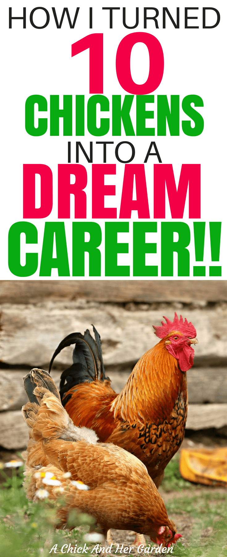 It IS true that you can turn your passion into a career! She turned 10 chickens into the job of her dreams! #homesteadliving #makemoneyonline #makemoneyfromhome #workfromhome #achickandhergarden