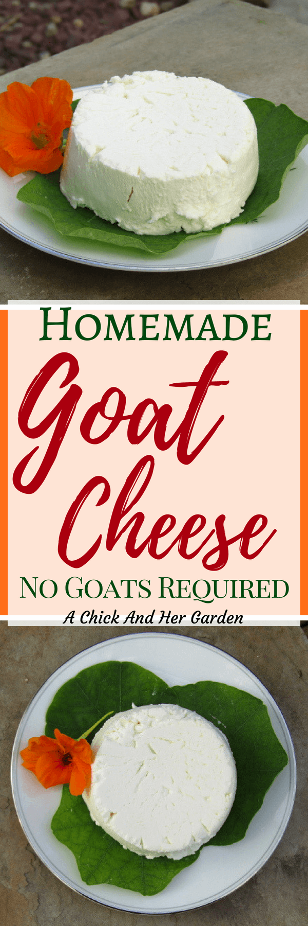 I'm in love with goat cheese! I've always wanted to learn how to make goat cheese and am so glad I finally tried this! It was so easy! #makecheese #goatcheese #recipesfromscratch #goatmilkrecipes #achickandhergarden