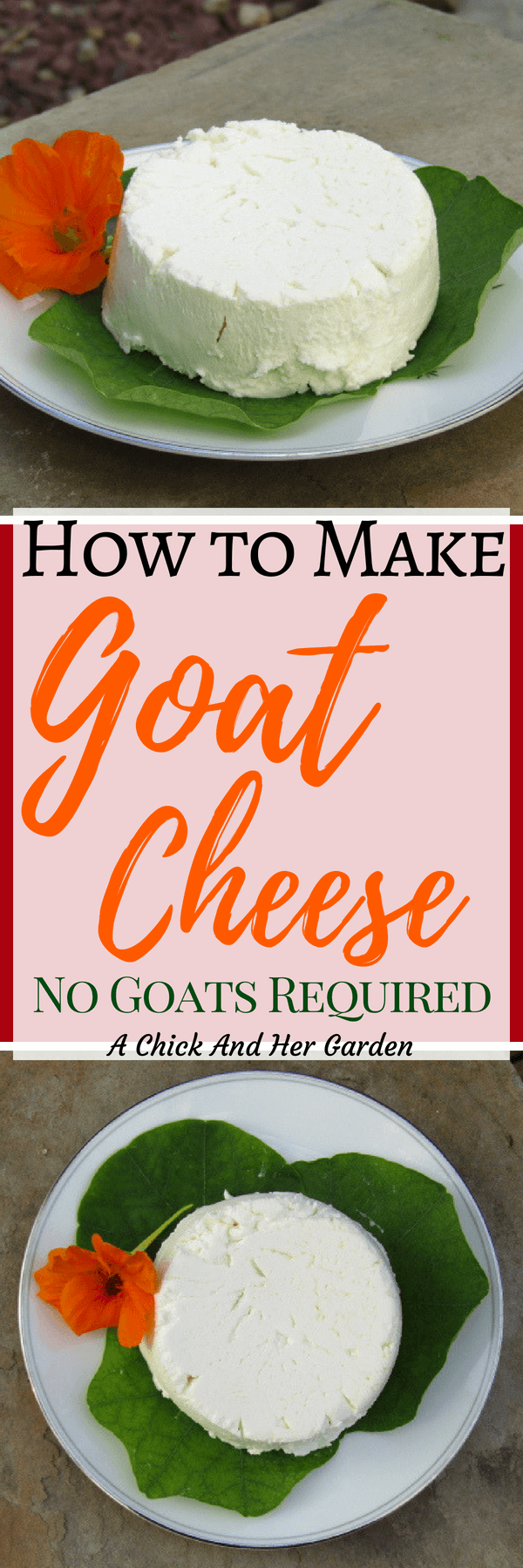 I've wanted to learn how to make goat cheese for a long time, but put it off thinking it would be hard. I was surprised how easy this was and have already made goat cheese 3 times this week! #makeyourowncheese #goatcheese #howtomakecheese #fromscratchcooking #achickandhergarden