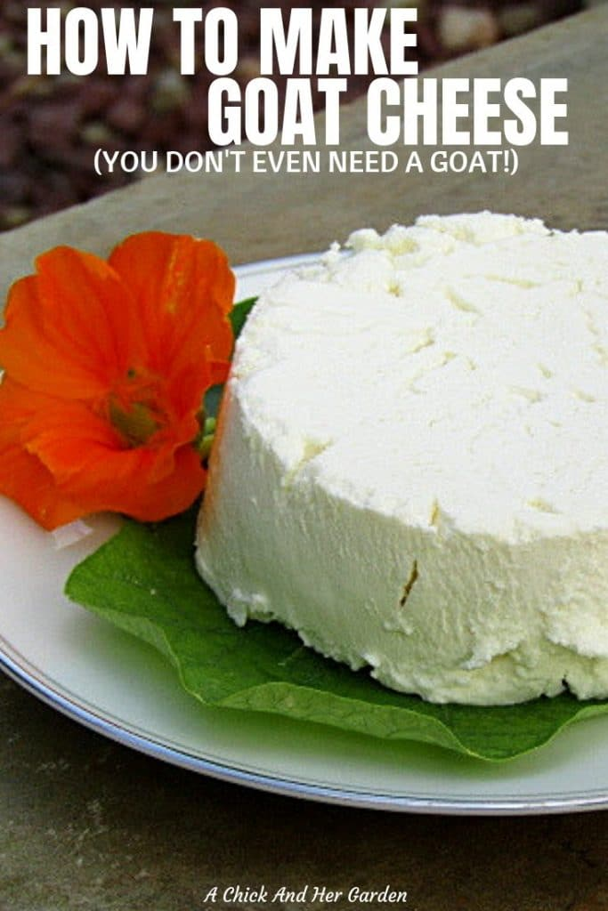 I was always nervous to make goat cheese myself. I'm not really sure why! After reading her post I make it all the time now! SOOOO GOOD!! #goatcheese #homemadecheese #fromscratchrecipes #makeyourowncheese #cleanrecipes #achickandhergarden