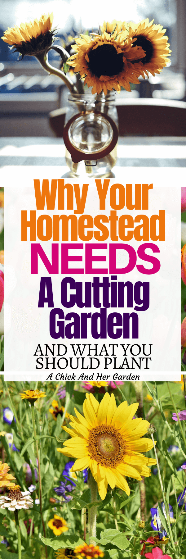 Every homestead needs a cutting garden! It's easy to forget about flowers when you've got chickens to feed, bedding to change, cabbage worms in the vegetable garden. This is the perfect list of why you should take time for flowers! #cuttingflowers #cuttinggarden #freshcutflowers #homesteadgarden #achickandhergarden