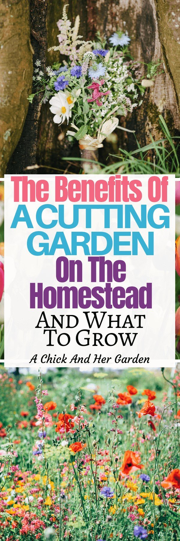 Flowers were never something I was overly concerned about. Check out why I was so wrong! You NEED a cutting garden on the homestead! #wildflowers #growingflowers #cuttinggarden #flowers #achickandhergarden