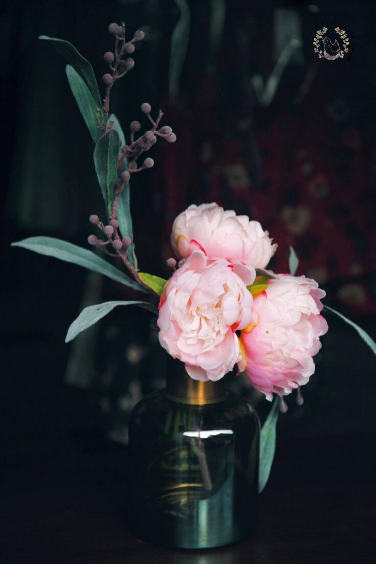 three pale pink peony flowers with seeded eucalyptus in a small glass vase