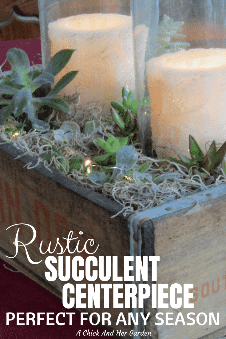 I'm in love with this rustic succulent planter centerpiece! It was great for the holidays, but so pretty I think I'll be leaving it up year round! #succulentcenterpiece #succulentgardens #indoorsucculents #succulentboxes #achickandhergarden