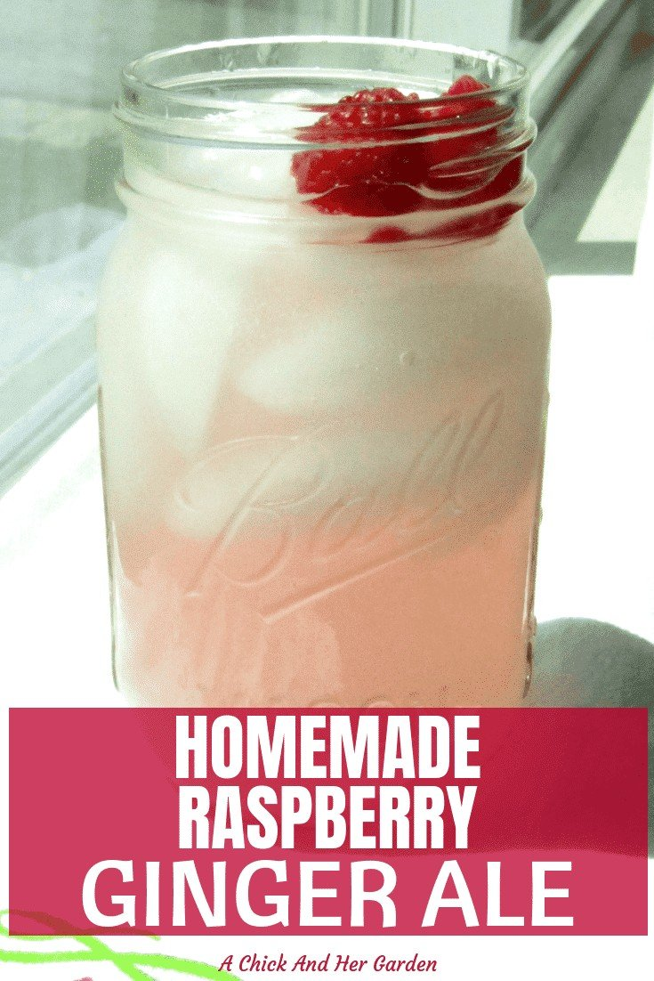 """Raspberry Ginger Ale with 6 ingredients that you can pronounce?! I was so excited to try this recipe for raspberry ginger ale. It was so refreshing without all those """"ingredients"""" that you can't even pronounce! #fromscratch #cleaneating #makeityourself #raspberryrecipes #gingerale #achickandhergarden"""