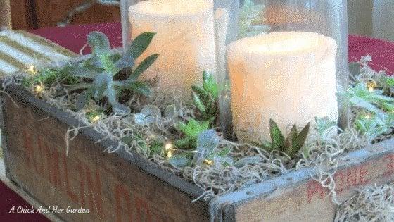 Rustic Succulent Planter Centerpiece